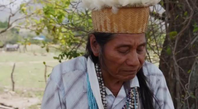 "VIDEO: ""Voces de Amerikua "" presenta a Berito Kuwarua del pueblo U'wa, Colombia"