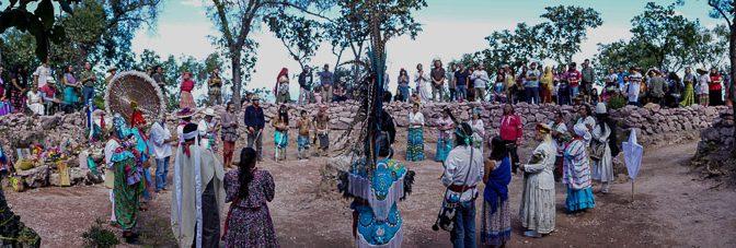 Raices de la Tierra Mexico 2018