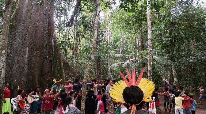 JOIN US FOR A UNIQUE CELEBRATION IN THE YAWANAWA SACRED VILLAGE, ACRE, BRAZIL